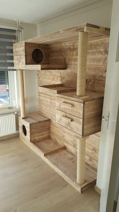 🤩Built in cat storage! - Michael Emmler - 🤩Built in cat storage! 🤩Built in cat storage! Cat Habitat, Cat House Diy, Diy Cat Tree, Cat Towers, Cat Shelves, Cat Playground, Cat Enclosure, Cat Room, Cat Condo