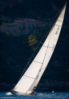 Photo by Guido Cantini Panerai. Classic Sailing, Classic Yachts, Us Sailing, Sailing Yachts, Yacht World, Sail Racing, Yacht Week, Air Photo, Boat Painting