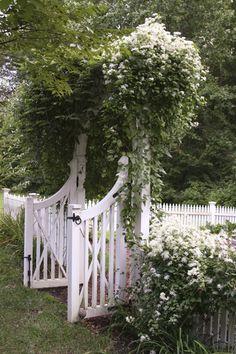 Gartengestaltung Ideen weiße Clematis weißes Gartentor Zaun aus Holz Though early around thought, this pergola
