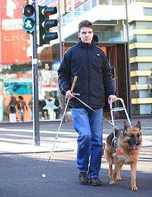 blinde menschen mit hunden - Google-Suche Blinde, Google, People, Searching