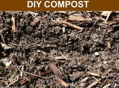 Composting is the ultimate reward for recycling your kitchen and garden waste for use in the garden! If you are a beginner gardener, Ive got some composting basics to get you started composting t...  Read the rest at FoodieGardener.comhttp://foodiegardener.com/composting-basics-for-beginners/