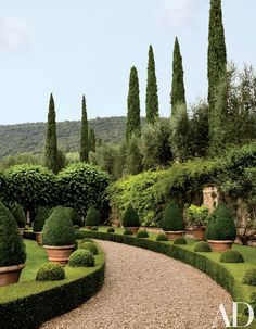 Clipped boxwood hedges flank a gravel path | archdigest.com