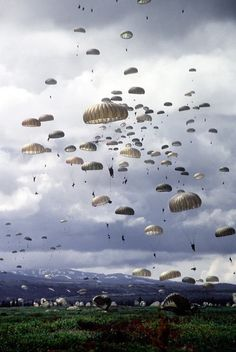 Partly cloudy with a 100% chance of an ass-whooping! (Photo obtained from Seal of Honor Facebook page. If you have Facebook, check out the page!)