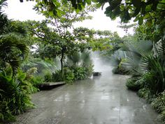 The Botanical gardens in Medellin Colombia