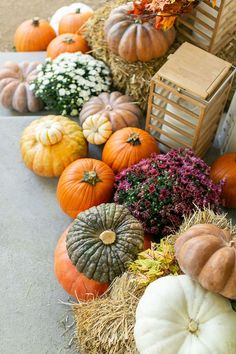Our favorite fall porch decorating ideas and styling tips for decorating your fall porch! #Fall #Porch #Decorating #FallDecoratingIdeas #PorchIdeas #Pumpkins #HayBales #Fall #Styling #FrontPorch #FallPorch Fall Home Decor, Autumn Home, Porch Decorating, Decorating Ideas, Types Of Pumpkins, Potted Mums, Fall Mums, Fall Plants, Flower Market
