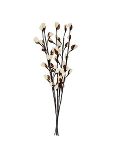 I would love these in my bedroom- Brown Branch Twig Lights with White Flower Roses. So cute xx