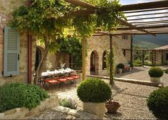 The beautiful vine covered Tuscan courtyard.