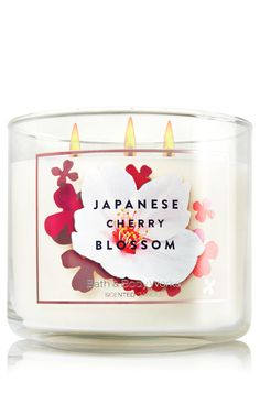 Japanese Cherry Blossom 3-Wick Candle