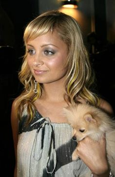 that little dog looks like my little Lola when she was a baby pup:)
