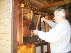 bee house with beehives - Google Search