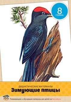 Зимующие птицы — картинки для детей, призванные помочь получить дополнительные знания об окружающем мире. Удачного обучения!