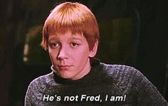 "I got Fred Weasley! Which ""Harry Potter"" Quidditch Player Is Your Soulmate?"