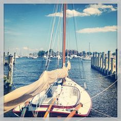 Double Dose of Tranquility #tranquilityproject #sails #annapolis