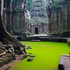 This looks so amazing!  Jungle Castle - Ta Prohm, a temple at Angkor, Siem Reap Province, Cambodia
