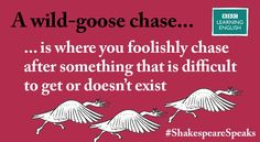 A wild goose chase