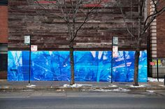 brooklyn-stret-art_Doug_Fogelson-chicago-web
