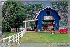 The scenery fram, Suan Pueng, Ratchaburi Thailand. #Travel #Thailand ++ ++ English language support >> http://ThailandHolidays7.com