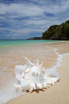Il mare ha questa capacità; restituisce tutto dopo un po' di tempo, specialmente i ricordi. (Carlos Ruiz Zafon)