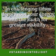 In challenging times deeply root your energy into the Earth for greater stability. Facebook Sign Up, Stability, Earth, Times, Mother Goddess, World, The World