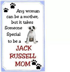 Jack Russell moms are special! Chien Jack Russel, Jack Russell Puppies, I Love Dogs, Puppy Love, Cute Dogs, Parson Russell Terrier, Jack Russells, Bull Terrier Dog, Terriers