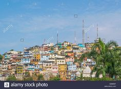 Download this stock image: Low angle view of picturesque colored poor houses at the top of a hill at Cerro Santa Ana in Guayaquil, Ecuador. - G2M8GF from Alamy's library of millions of high resolution stock photos, illustrations and vectors.