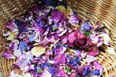 purple dried flowers - Google Search