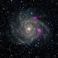 Black holes glow in false-color purple in this image of the galaxy IC 342 by NASA/JPL-Caltech/DSS. #astronomy