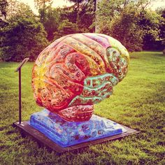 Brain at the IU Arboretum