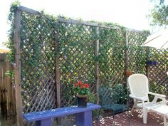 , Vine-Covered Trellis Vine-Covered Trellis Vine-Covered Trellis Vine-Covered Trellis Although age-old in notion, a pergola is enduring somewhat of a modern day rebirth most of these days. An attractive. Privacy Trellis, Vine Trellis, Garden Trellis, Back Gardens, Outdoor Gardens, Garden Dividers, Outdoor Living Rooms, Outdoor Spaces, Vides