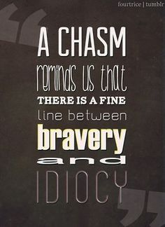 "Divergent Series by Veronica Roth ""The Chasm reminds us that there is a fine line between bravery and idiocy."""