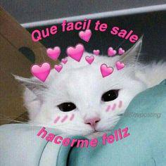 Frases Tumblr, Black Barbie, Melanie Martinez, Sad, Wattpad, Books, Animals, Instagram, Cat Houses