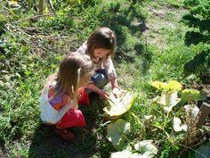 Green Gulch Farm Zen Center | Joyful Mind Project