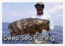 Marbella and Puerto Banus Deep Sea & Big Game Fishing....