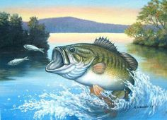 acrylic on board one of my hobbies is bass fishing. i tried all spring and summer, to catch this fish. bass after minnows Carp Fishing, Best Fishing, Fishing Tips, Fishing Lakes, Fishing Cat, Halibut Fishing, Sport Fishing, Bass Fishing Pictures, Different Fish