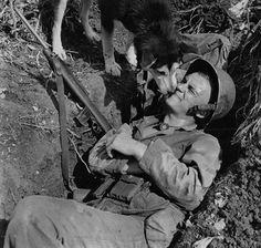 Dog With Marine In Foxhole, Saipan, Circa 1944