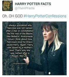 #HarryPotterConfessions
