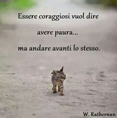 be courageous means to be afraid ...... but go ahead anyway  - Altri Aforismi su http://www.messaggi-online.it/Aforismi/c/21.html