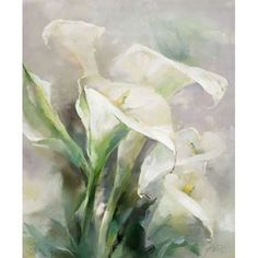 Shiny IV Canvas Art - Willem Haenraets (20 x 24)