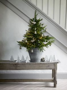 Christmas tree in a galvanized bucket.