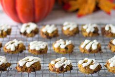 Pumpkin pie and cookies are favorite holiday treats. Why not combine them? You'll love these soft glazed sugar free chocolate chip pumpkin cookies.