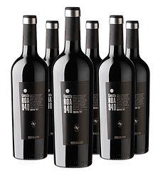 Cuesta Roa 940     Etiqueta Negra 2012