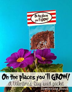 Sowdering About: Oh the places you'll GROW! Valentine's Day seed packets