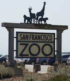Exploring the San Francisco Zoo