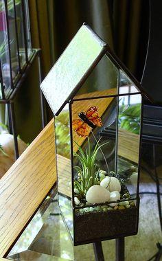 Butterfly House Terrarium, Glass Terrarium Planter with Air Plant, DIY. $49.00, via Etsy.