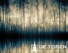 Forrest whispers door Alain Delvoye - Te huur/te koop via Kunsthuizen. Urban Photography, Landscape Photography, Art School, Belgium, Digital Art, Wildlife, Waves, Abstract, Artist