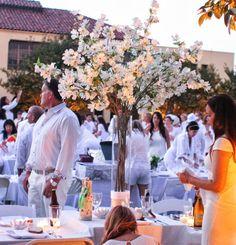 Diner En Blanc | Kirbie's Cravings | A San Diego food blog