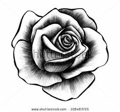 Rose Rendering by SPYDER, via ShutterStock