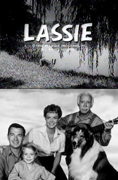 LASSIE... I loved this show too...who knew it lasted 19 seasons??? great trivia...right there... =)