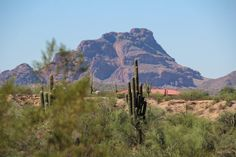 Roadtrip Arizona