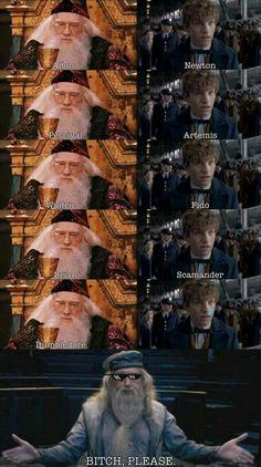 Harry Potter World Movies long Harry Potter Movies By Year. Harry Potter World Gringotts, Harry Potter Movies To Watch Estilo Harry Potter, Mundo Harry Potter, Harry Potter Jokes, Harry Potter Fandom, Harry Potter Characters Names, Harry Potter Hogwarts, Harry Potter World, Images Harry Potter, Fans D'harry Potter